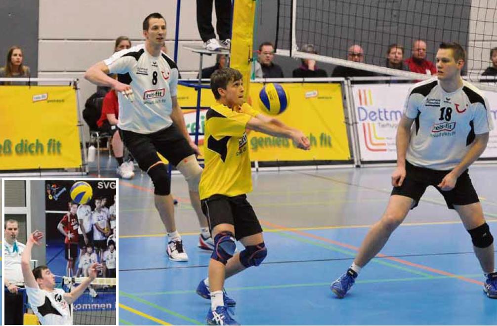 Volleyball Lüneburg